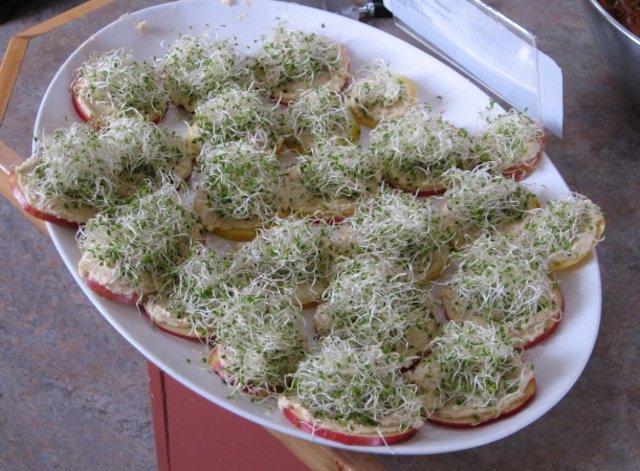 applesliceswithhummusandsprouts