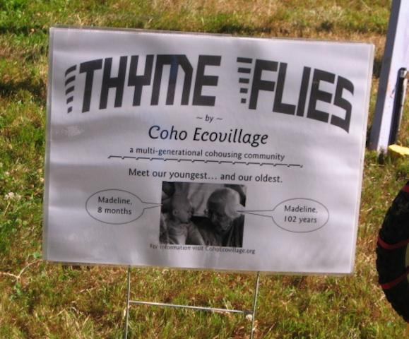 ThymeFlies02