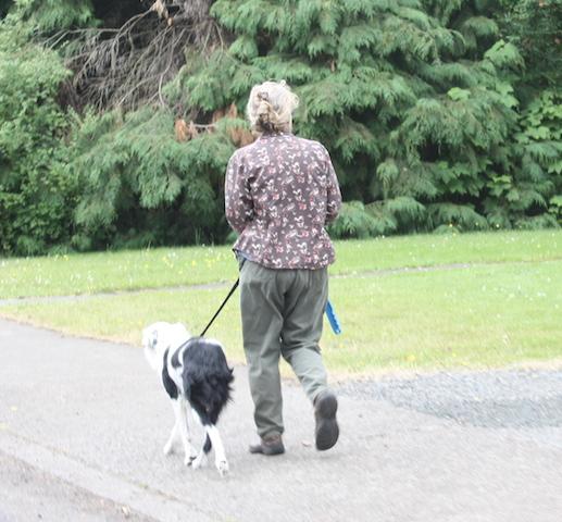 blue walk dog