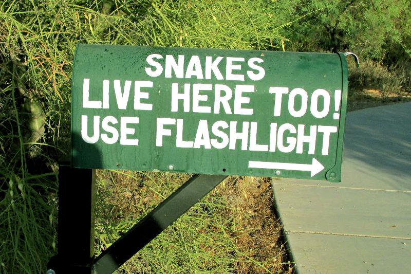 az-milagro-snakewarning_by_john_solso